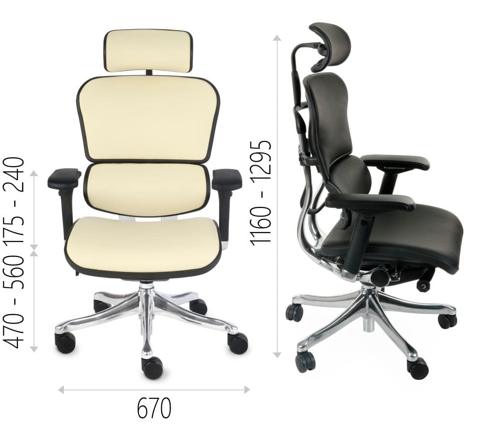 Ergonomic office chair ERGOHUMAN natural leather - dimensions