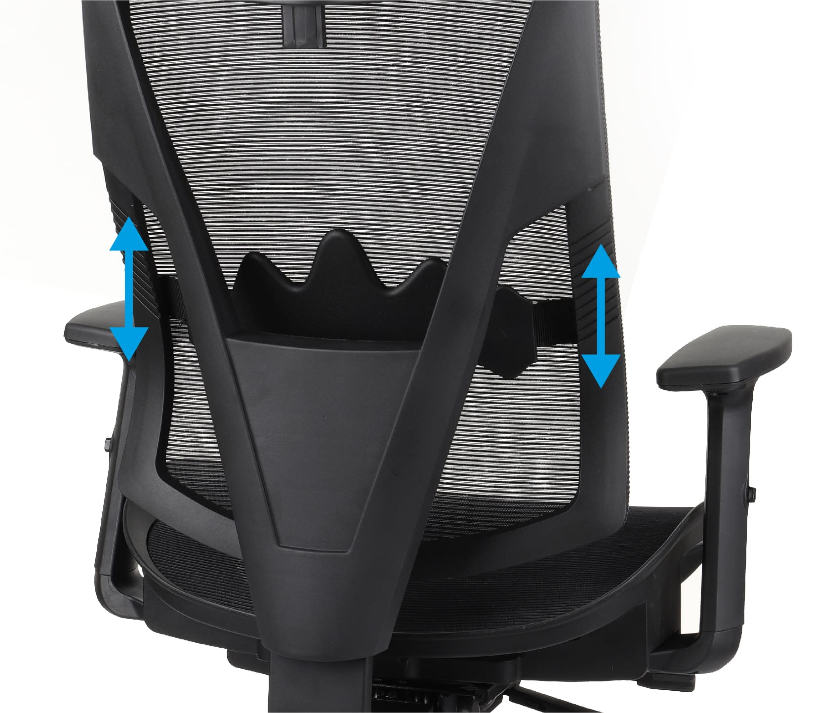 The backrest with the lumbar profile of the FUTURA office chair